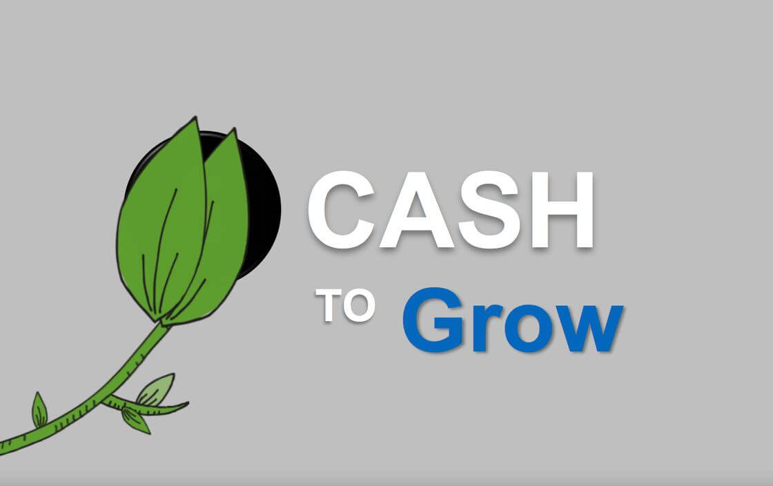 You Need Cash To Grow
